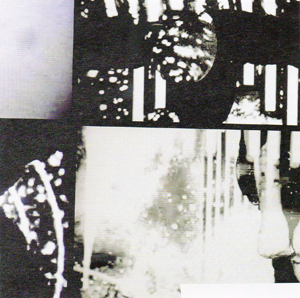 Velvet Chrome - Readymades (Hobo Cult Records)