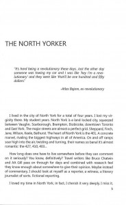 The North Yorker by Alain Mercieca (excerpt)