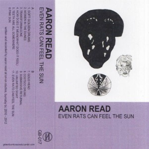 Aaron Read - Even Rats Can Feel The Sun