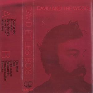 David and the Woods - David et les bois