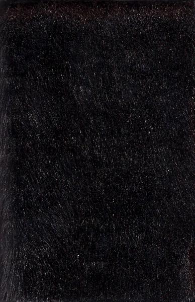 Beard Closet // Primate Pyramid - Split Cassette