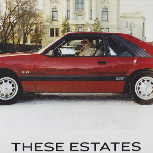 New Canadiana :: These Estates - The Dignity of Man