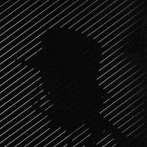 New Canadiana :: Hobo Cubes - Untitled C.90